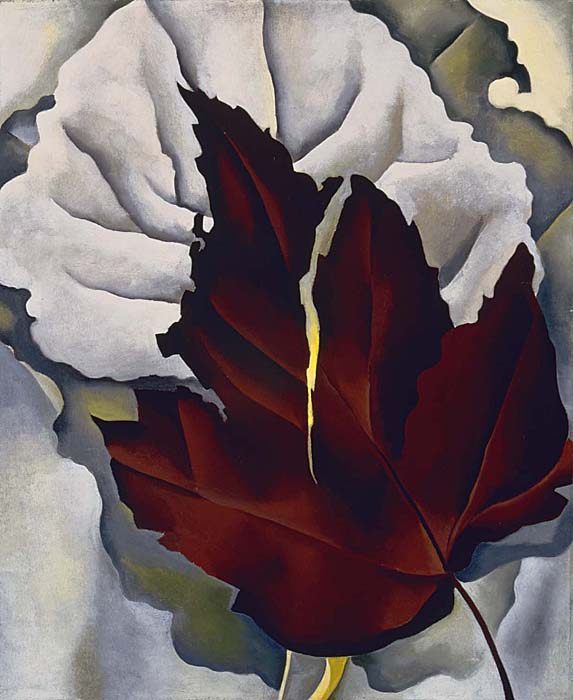 Georgia O'Keeffe Pattern of Leaves, 1924