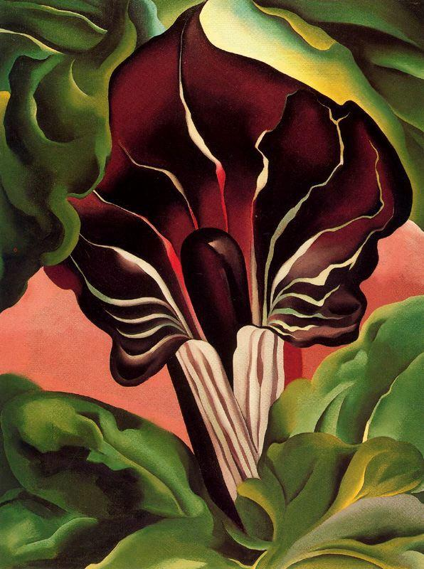 Georgia O'Keeffe Jack in the Pulpit II