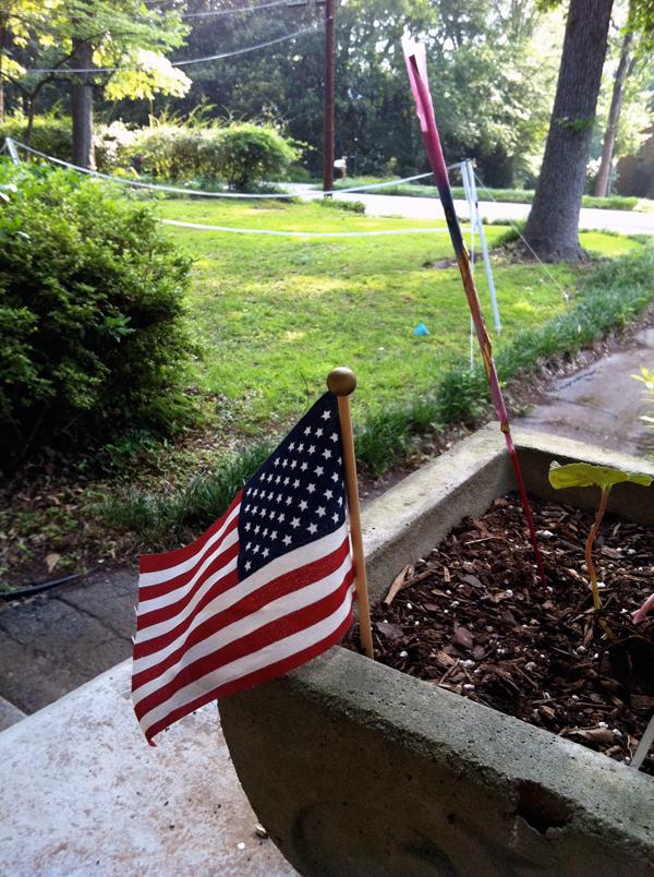 badminton american flag