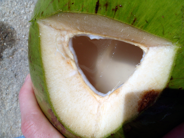 coconut water Rio de Janeiro
