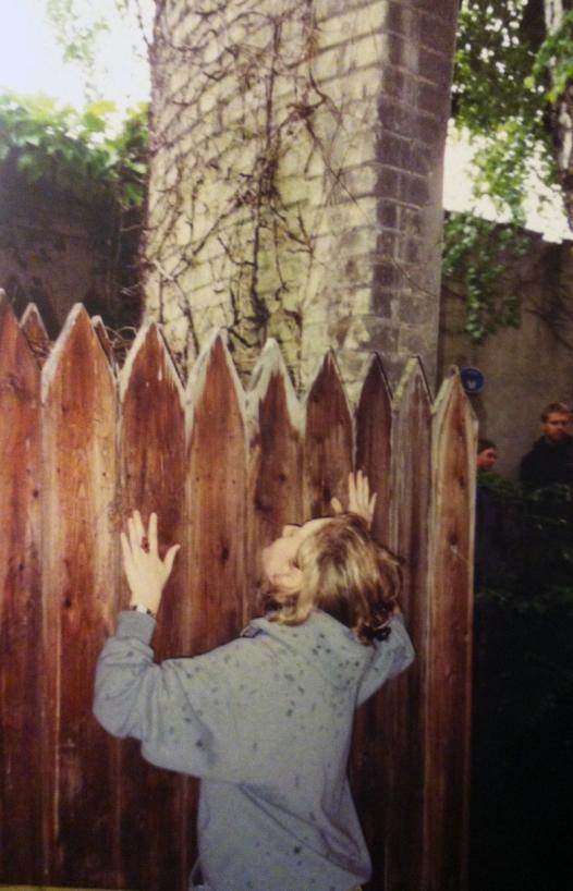 castle_fence