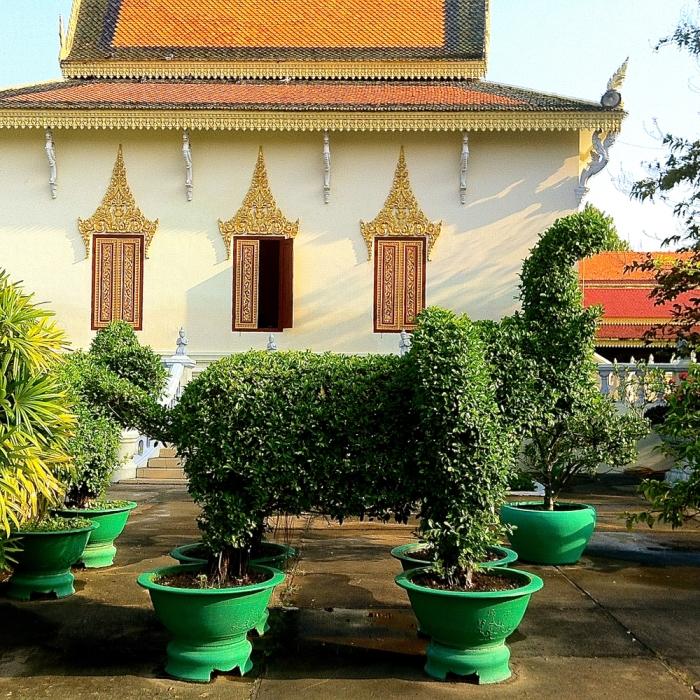 elephant_topiary